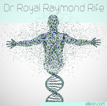 royalrife